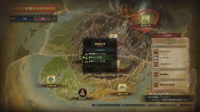 龍結晶東キャンプ8